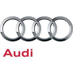 Becuri Xenon Audi
