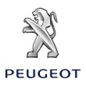 Capace Roti Cromate Peugeot
