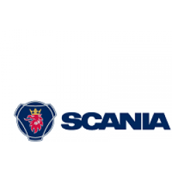 Covorase Interior Scania