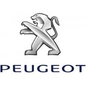 Aparatori Noroi Peugeot