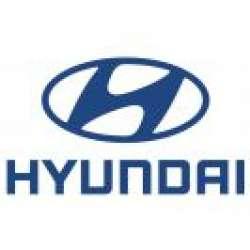 Bullbar Inox Hyundai