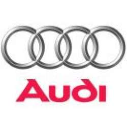 Carcase Chei Audi