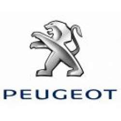 Carcase Chei Peugeot