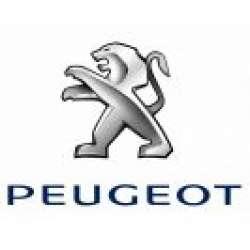 Carcase Chei Peugeot